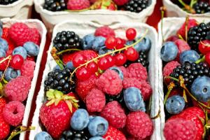 las-vitaminas-necesarias-para-sobrevivir-al-invierno