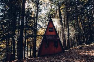 cabanas-en-el-bosque-abraza-la-naturaleza-desde-lo-alto-de-un-arbol