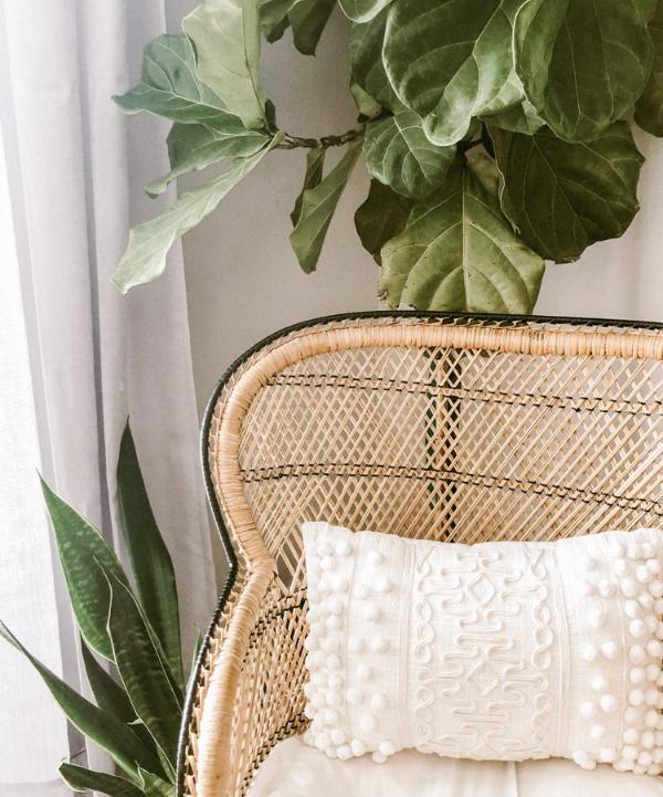 decora-tu-hogar-con-tendencias-rompedoras-sin-danar-el-medio-ambiente