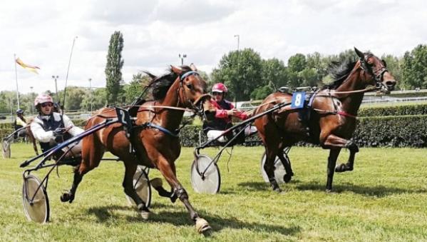 nueva-edicion-de-hats-amp-horses-menorca-el-ascot-balear